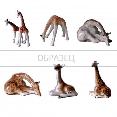 Жирафы [ЛФЗ]
