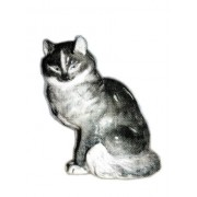 Кот (ЛФЗ)